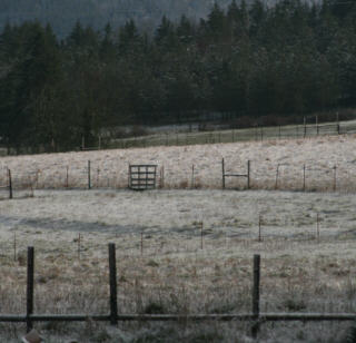 march-snow.jpg