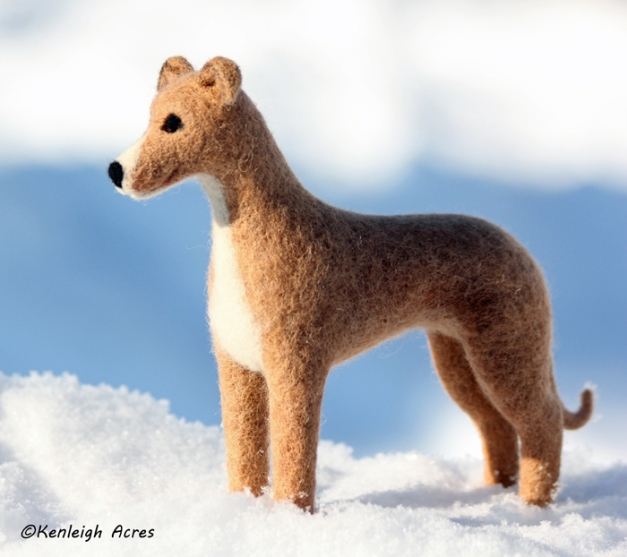 web-dogs-in-snow-16