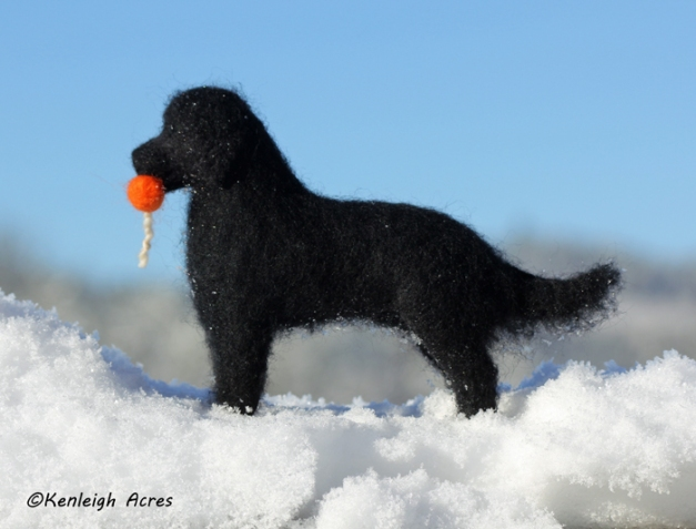 web-dogs-in-snow-4